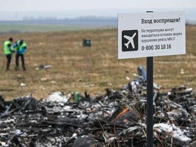 Место крушения MH17. Фото: politeka.net